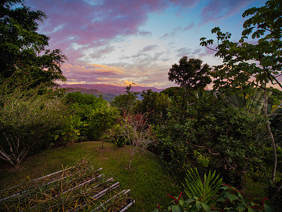 The garden at Casa de Jupiter at sunset near Dominical, Costa Rica