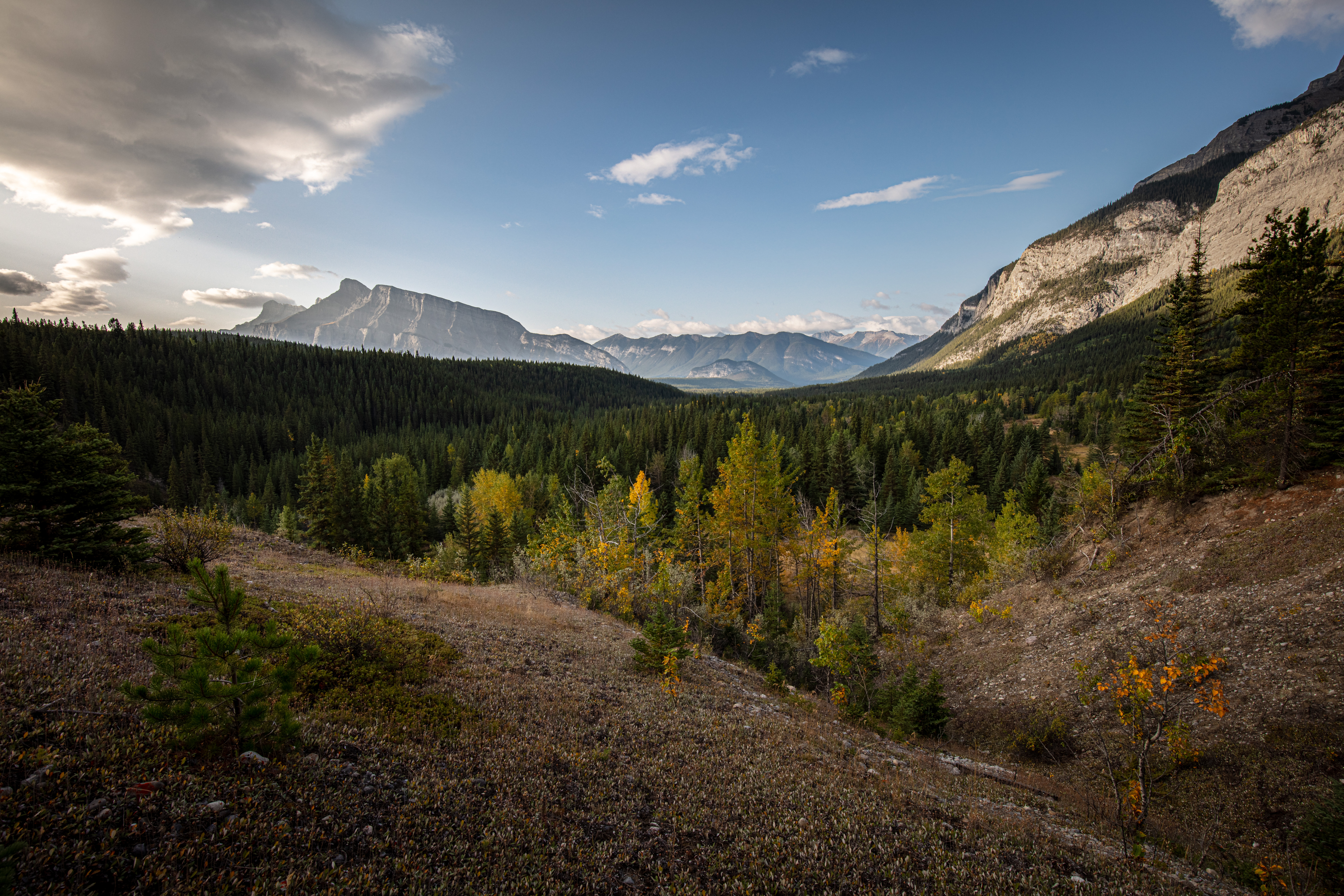 Looking down on the Bankhead Valley, Alberta, Canada as the sun continues to rise on a beautiful September morning